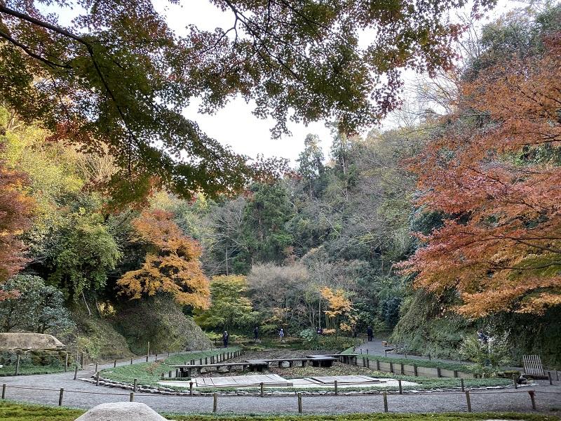 明月院本堂裏庭園の風景写真